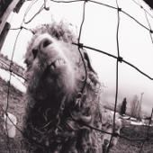 Vs. (Expanded Edition)-Pearl Jam