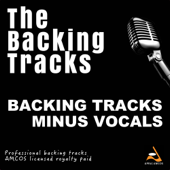 Backing Tracks Hits 2015, Vol. 516 (Instrumental Backing Track)