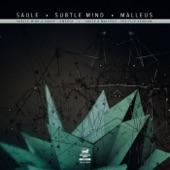 Saule & Malleus - The Flip Version