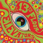 13th Floor Elevators - Kingdom of Heaven (Is Within You) [Mono LP Version]
