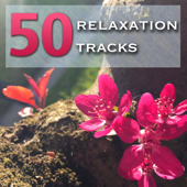 50 Relaxation Tracks - Calm Your Mind, Prepare for Relax Techniques and Meditation