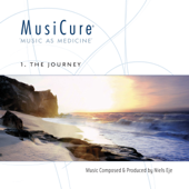 MusiCure 1 The Journey