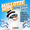 Mallotze Hits Après Ski 2015
