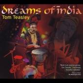 Tom Teasley - Om Tat Sat