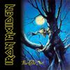 Iron Maiden - Fear of the Dark Grafik