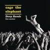 Cage the Elephant - Shake Me Down