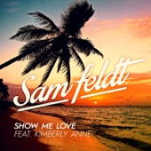Show Me Love (feat. Kimberly Anne) - Single