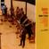 EUROPESE OMROEP | Booker 'N' Brass - Booker Ervin