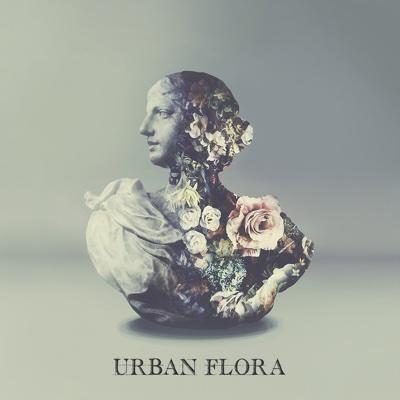 Fantasy - Alina Baraz & Galimatias song