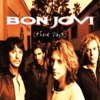 These Days, Bon Jovi