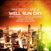 Well Run Dry (Promise Land Radio Edit) [feat. Amie M]