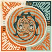 Aimee Mann - Living a Lie (feat. James Mercer)