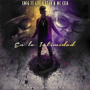 En la Intimidad (feat. Guelo Star & MC Ceja) - Single Mp3 Download