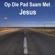Various Artists - Op Die Pad Saam Met Jesus