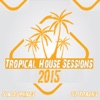 Tropical House Sessions 2015, 2014