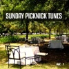 Sunday Picknick Tunes, Vol. 1 (Smooth and Jazzy Weekend Feeling)