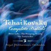 The Nutcracker, Op. 71, Pt. 2: XXII. Finale. Final Waltz and Apotheosis