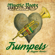 Trumpets (Reggae Remix) - Mystic Roots Band
