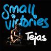 Tejas - Small Victories - EP artwork