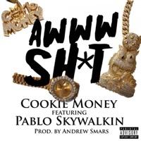 Awww Sh*t (feat. Pablo Skywalkin) - Single Mp3 Download