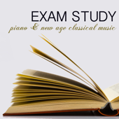 Exam Study Piano & New Age Classical Music for Concentration, Focus on Learning, Fast Reading & Brain Power