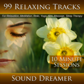 99 Relaxing Tracks (10 Minute Sessions) For Relaxation, Meditation, Reiki, Yoga, Spa, Massage and Sleep Therapy