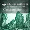 KABB - Klagesangene (Bibel2011 - Bibelens skrifter 25 - Det Gamle Testamentet) artwork