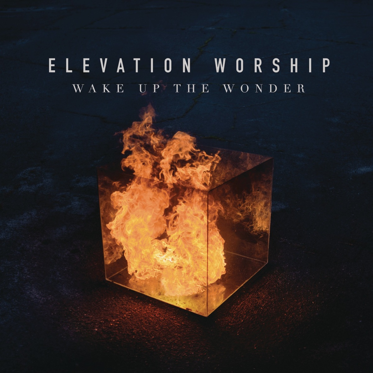 Wake Up the Wonder Live Elevation Worship CD cover