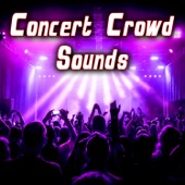 Sound Ideas - Applause at a Large Rock Concert