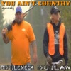 Bottleneck & Outlaw - You Aint Country  Single Album