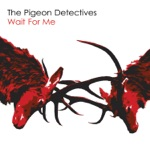 The Pigeon Detectives - I'm Always Right