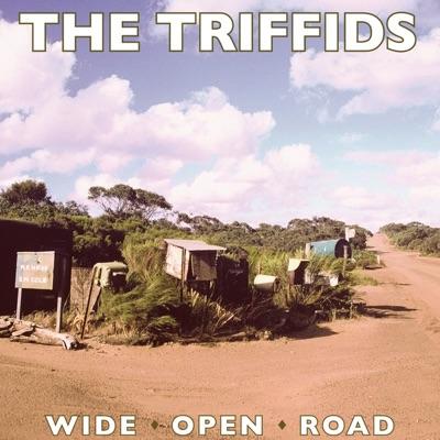 Wide Open Road - Single - The Triffids