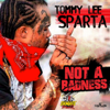 Tommy Lee Sparta - Not a Badness artwork