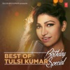 Best of Tulsi Kumar - Birthday Special