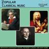 Popular Classical Music - 群星
