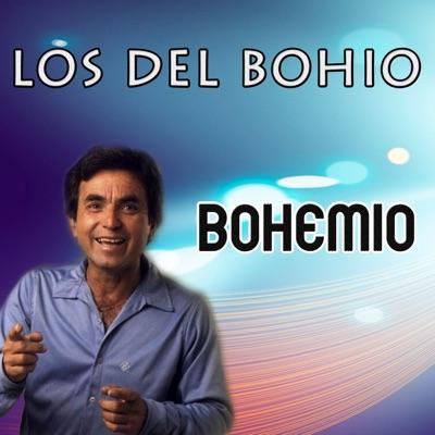 Bohemio - Single - Los Del Bohio