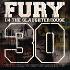 FURY IN THE SLAUGHTERHOUSE Time to Wonder
