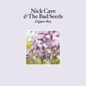 Nick Cave & The Bad Seeds - Nature Boy (Edit)