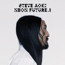 Steve Aoki & Afrojack