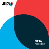 Accordion - Single