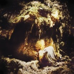 Wolves in the Throne Room - Woodland Cathedral
