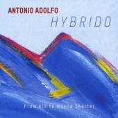 Antonio Adolfo - Speak No Evil