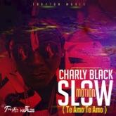 Slow Motion (Te Amo Te Amo) - Single