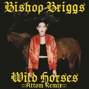 Wild Horses (Attom Remix) - Single Mp3 Download