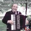 Melodii Lăutărești Cu Andrei Mihalache - Andrei Mihalache