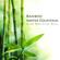Deep Relaxation - Shakuhachi Sakano