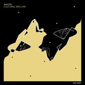 Cultural Decline (Extended Mix) - ANOTR