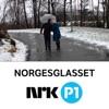 Norgesglasset