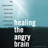 Healing the Angry Brain: How Understanding the Way Your Brain Works Can Help You Control Anger and Aggression (Unabridged) - Ronald Potter-Efron MSW PhD
