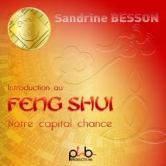 Introduction au Feng Shui. Notre capital chance